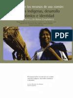 Leticia Moreno -  Manejo de los bienes comunes y pueblos indígenas