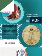 Anatomía Aplicada a La Fisioterapia