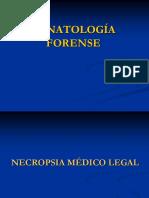Tanatologia Forense Alumnos Imprimir