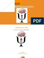 SESION N° 4 Sindrome Prefrontal