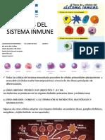 Equipo 3 Células del Sistema Inmune