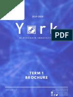 YBI Term 1