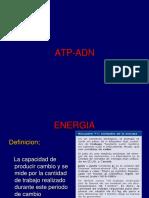 Clase Teórica ATP y ADN