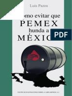 Pemex Hunda Mexico