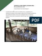 INSEMINACIÓN ARTIFICIAL POR VIDEOLAPAROSCOPIA tecnología avanzada en producción³n ovina