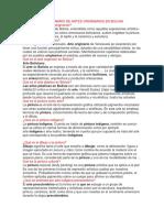 CUESTIONARIO DE ARTES ORIGINARIOS EN BOLIVIA.docx