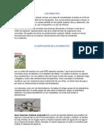 Clasificación de Insectos