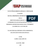 PLAN de TESIS 2019 -Segunda Berna