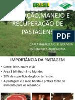 CURSO DE PASTAGEM PRONTO.pptx