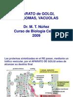 Aparato de Golgi Lisosomas y Vacuolas