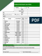 Check List Insp. Ponte Rolante,Talha,Portico (Anexo 01)-Rev_0