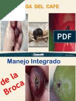 Broca del Fruto y manejo integrado-Edwin.ppt