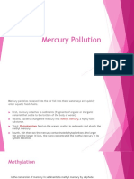 Mercury Pollutrion