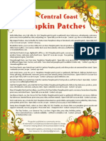 Pumpkin Patch Guide