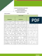 DIARIO DE CAMPO MARINELA.docx