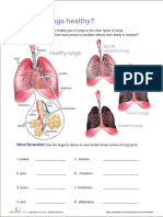 are-your-lungs-healthy.pdf