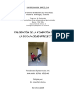 AMBR_TESIS.pdf