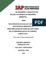 instrumento tesis taco anco.docx