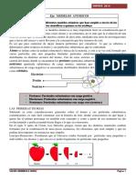modelos atomicos 8os.pdf