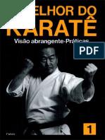 o Melhor Do Karate Fundamentos Básicos