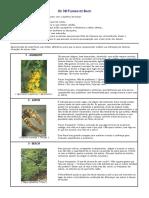 68684258-Os-38-Florais-de-Bach.pdf