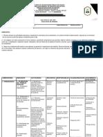 Dianostico y Plan Anual Del Director