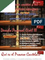 ppt-medidascautelaresespecificas-copia2-131124233646-phpapp01-convertido.pptx