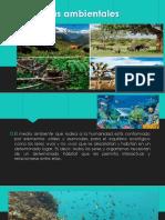 ecosistemas ambientales
