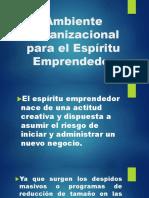 Ambiente Organizacional Para El Espiritu Emprendedor-1