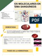 Biologia Molecular Diapositiva Completa