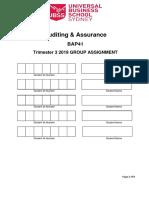 BAP41 Assignment Instructions Guidance T319