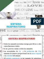 6_sistema Respiratorio Primo