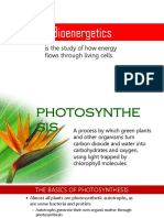 l3. Photosynthesis