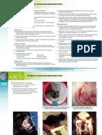 RO_FIV_Infectia_cu_virusu_-imunodeficientei_feline.pdf