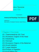 ch23_part1-digestive system