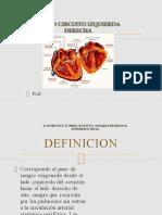 cortocircuitoizquierdaderechalist-130629005144-phpapp02.pptx
