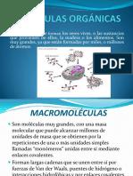 ecitydoc.com_moleculas-organicas.pdf