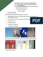 14. Etude Cytologique Du Col Utérin