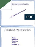 Opt Presentacion PDF