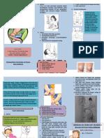 Leaflet Pijat Oksitosin