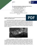 Rezumat teza dr - Constructii CH
