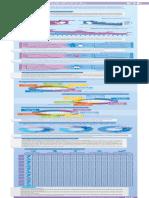 infografia_estadisticas_vitales_13_2014.pdf