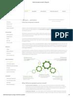 What is Pyrolysis Process__ Biogreen