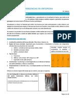Emergencias en Ortopedia y Fracturas Expuestas. Dr. Zamora