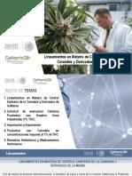 CBD COFEPRIS Presentación Lineamientos Cannabis 171118 VFF3 12.14.40.pdf