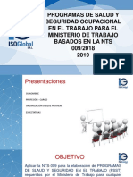 Programas de Salud y Seguridad en el Trabajo segun la NTS 009 1.ppt