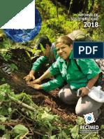 Informe Sostenibilidad Recimed 2018 Web