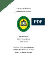 LAPORAN PRAKTIKUM FLEKSIBEL.docx