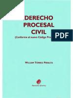derecho procesal de William Torrez