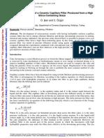 capillary filter.pdf